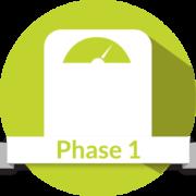 Icon-phase-1-e1502828511757