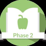 Icon-phase-2-e1502828502912